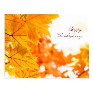 Schöner Herbst-Erntedank Postkarte