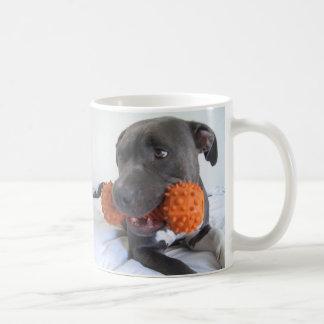 Schöner Hund Kaffeehaferl