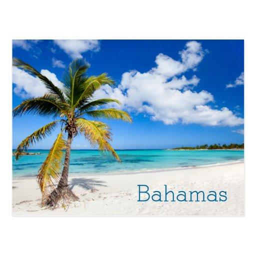 Schöner karibischer Strand Postkarte