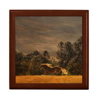 Schöner laufender Pferdekunst-Fliesen-Kasten Schmuckschachtel