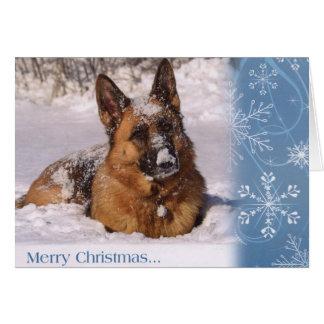 Schöner Schäferhund-Hund im Schnee Karte