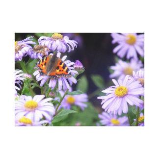Schöner Schmetterling auf Blumen Leinwanddruck