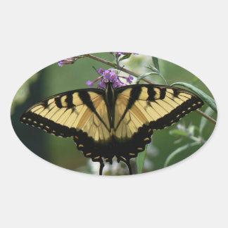 Schöner Schmetterlings-glatter ovaler Aufkleber