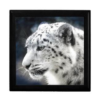 Schöner Schnee-Leopard Erinnerungskiste