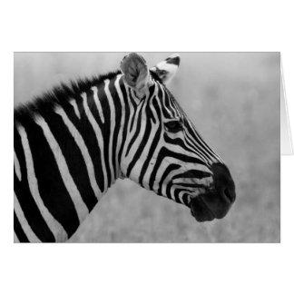 Schöner wilder Schwarzweiss-Zebraentwurf Karte