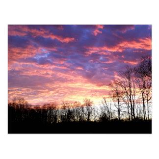 Schöner Winter-Sonnenaufgang Postkarte