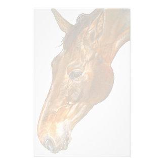 schönes Belgier Warmblood Pferdebild Briefpapier