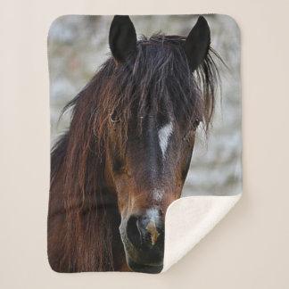 Schönes Brown-Pferd Sherpadecke