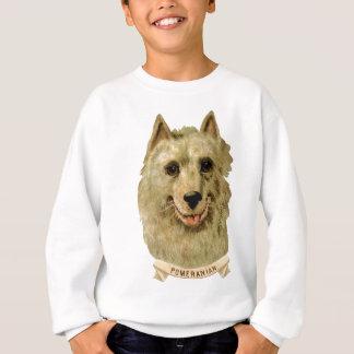 Schönes Gesichtsporträt eines Spitzhundes Sweatshirt