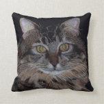 Schönes Maine-Waschbär-Katzen-Kissen