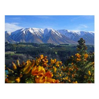 Schönes Neuseeland Postkarte