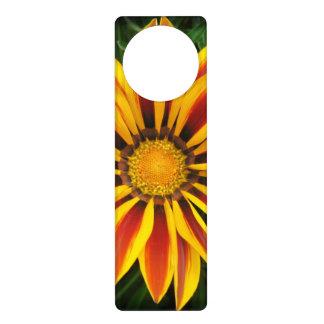 Schönes orange Sun-Blumen-Foto Türanhänger