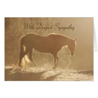 Schönes Pferd im hellen Beileids-Verlust des Karte
