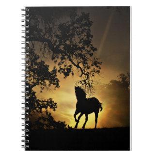 Schönes Pferd im Sonnenuntergang-Notizbuch Spiral Notizblock