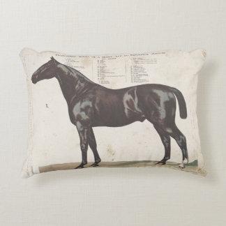Schönes Vintages Pferdekissen Dekokissen