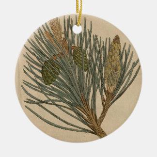Schotte-Kiefer Keramik Ornament