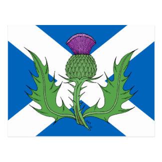 Schottische Distel und Saltire Postkarte