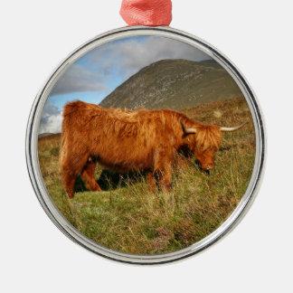 Schottische Hochland-Kühe - Schottland Silbernes Ornament