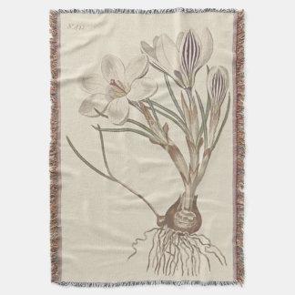 Schottischer Krokus-botanische Illustration Decke