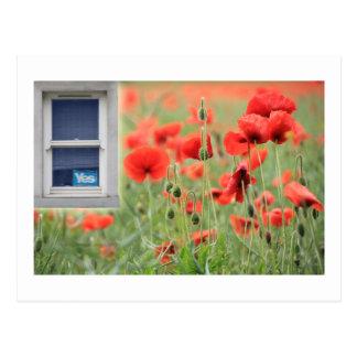 Schottisches Unabhängigkeits-ja Fenster Cupar Postkarte
