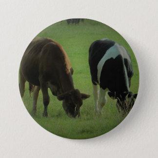 Schüchtert Foto rundes Abzeichen ein Runder Button 7,6 Cm