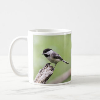 Schwarz-mit einer Kappe bedeckter Chickadee Kaffeetasse
