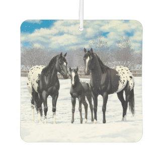 Schwarze Appaloosa-Pferde im Schnee Lufterfrischer