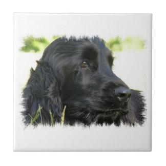 Schwarze Cocker spaniel-Hundefliese Keramikfliese