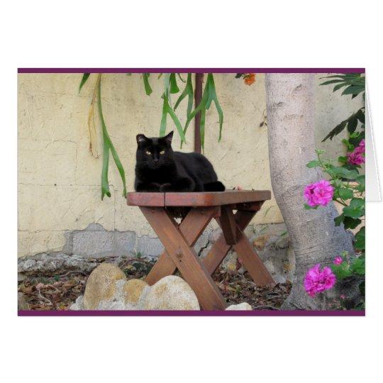 Schwarze Katze auf Bank mit rosa Pelargonien Karte