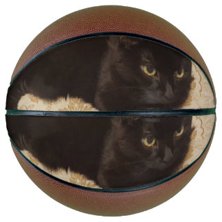 Schwarze Katze Roxie Basketball