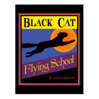 Schwarze Katzen-Fliegen-SchulVintage Postkarte