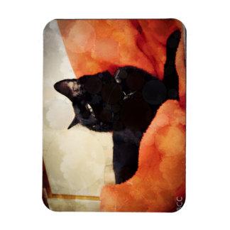 Schwarze Katzen-Magnet Magnet