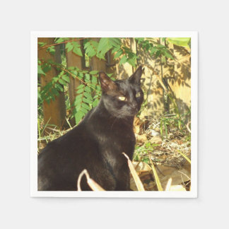 Schwarze Katzen-Morgen Sun Papierservietten