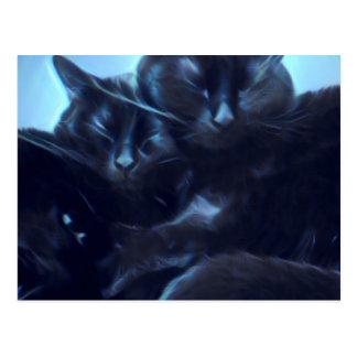 Schwarze Katzen Schlafens Postkarte