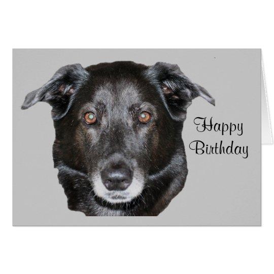 Schwarze Labrador retriever-Hundegeburtstags-Karte Karte