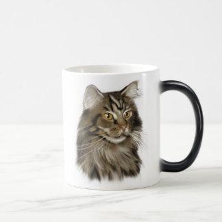Schwarze Tabby-Maine-Waschbär-Katze Verwandlungstasse