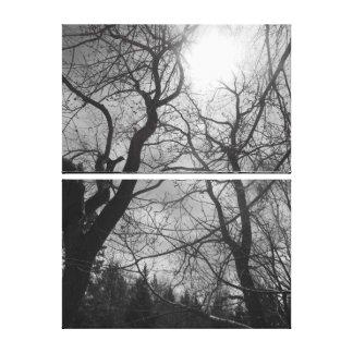 Schwarze u. weiße Foto-Leinwand der abstrakten Leinwanddruck