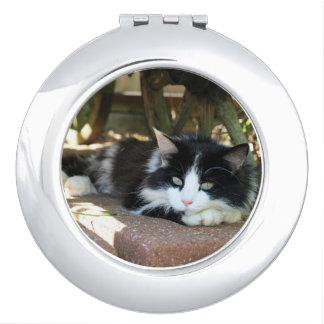 Schwarze u. weiße Miezekatze-Katzen-persönlicher Taschenspiegel