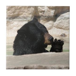 Schwarzer Bär, der ein cooles Bad genießt Keramikfliese