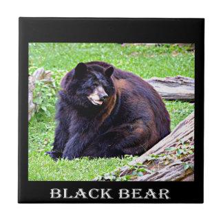 Schwarzer Bär Fliese