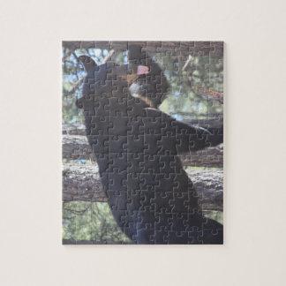 Schwarzer Bärn-Puzzle