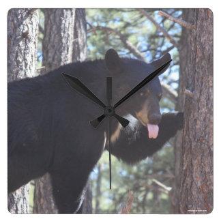 Schwarzer Bärn-Uhr Quadratische Wanduhr
