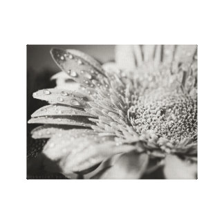 Schwarzer u. weißer Blumen-u. Leinwanddruck