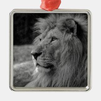 Schwarzer u. weißer Löwe - wildes Tier Quadratisches Silberfarbenes Ornament