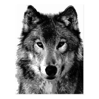 Schwarzer u. weißer Wolf-Porträt Postkarte