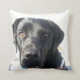 Schwarzes Labrador-Kissen Kissen