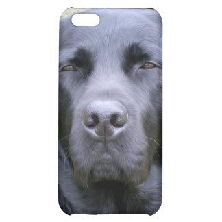 Schwarzes Labrador retriever