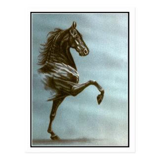 Schwarzes Saddlebred Pferd Postkarte