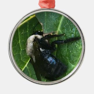 Schwarzweiss-Biene Rundes Silberfarbenes Ornament