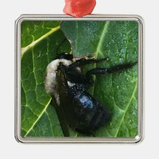 Schwarzweiss-Biene Silbernes Ornament